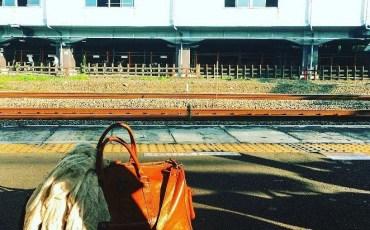 東京人、茨城へゆく