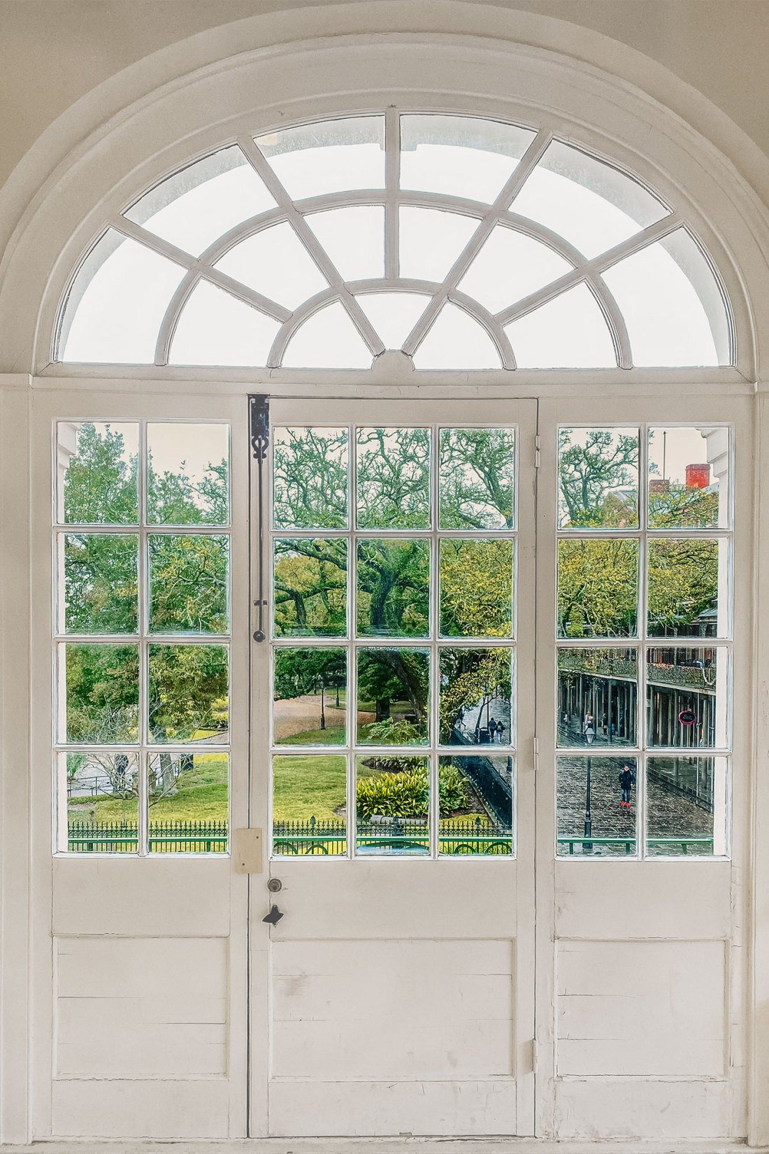 White window frame with green scene