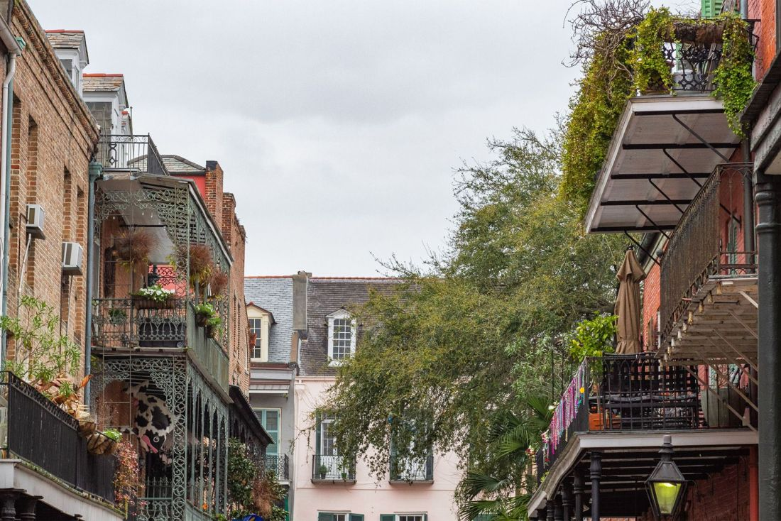 Pastel colored buildings with wrought iron balconies and green plants in New Orleans
