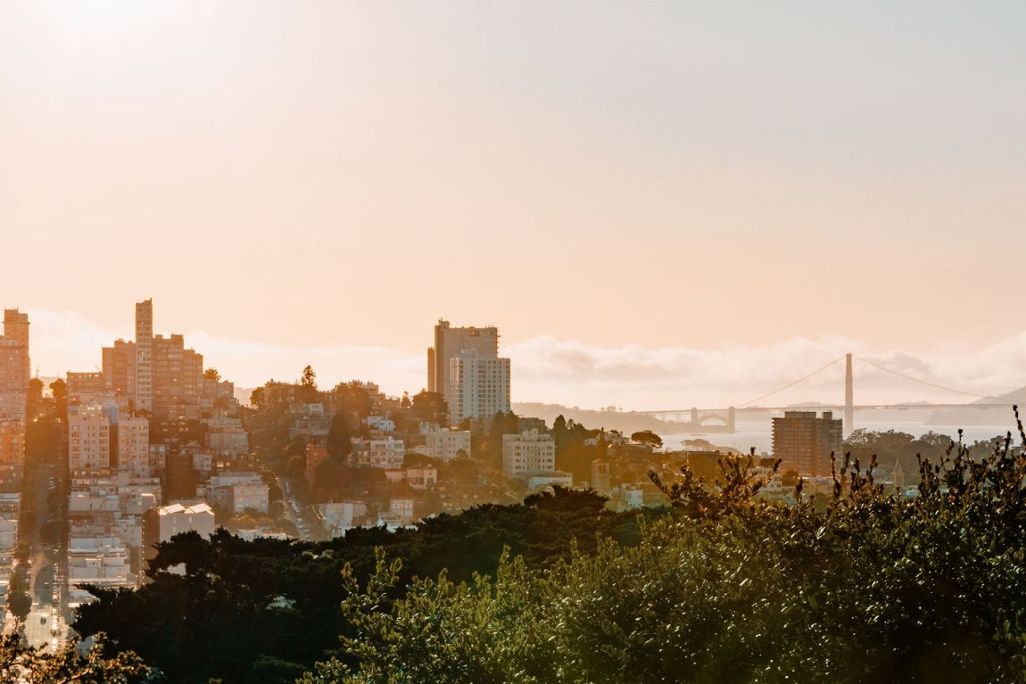 View from Coit Tower in San Francisco, California | Local Love and Wanderlust