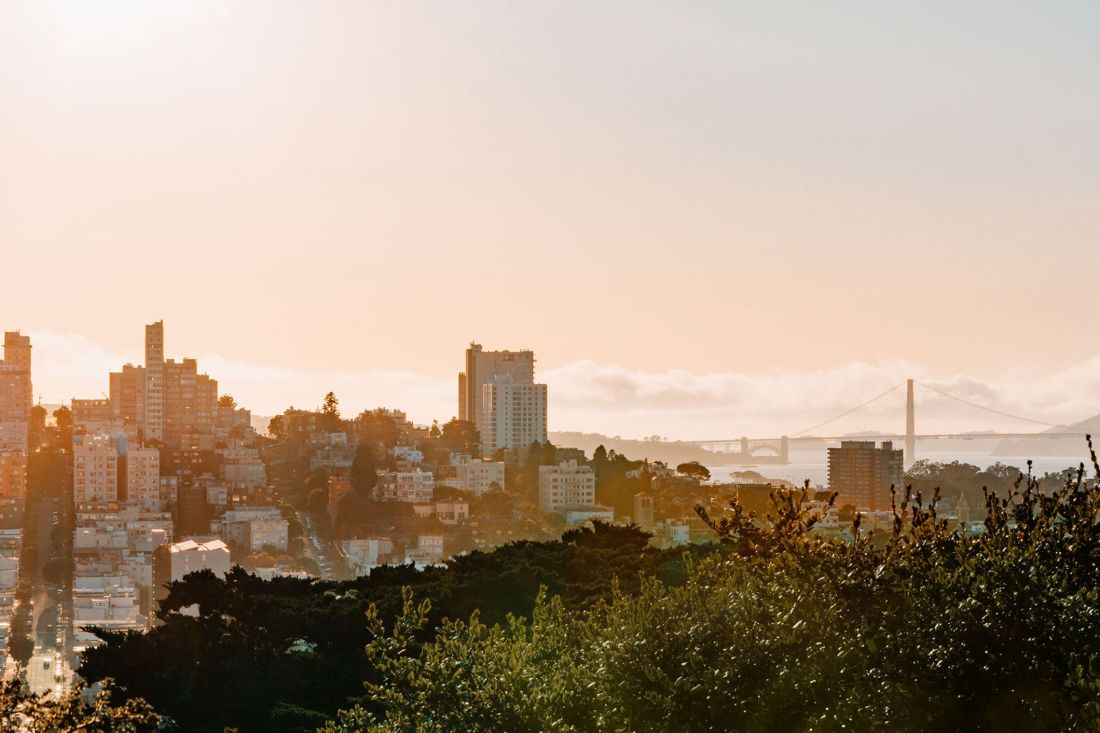 View from Coit Tower in San Francisco, California   Local Love and Wanderlust