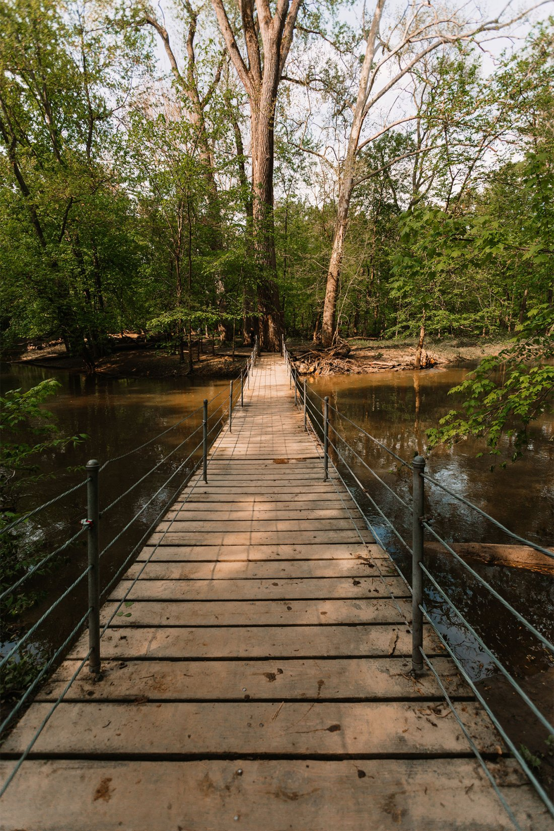 Swinging bridge in Swan Creek Preserve part of Toledo, Ohio Metropark