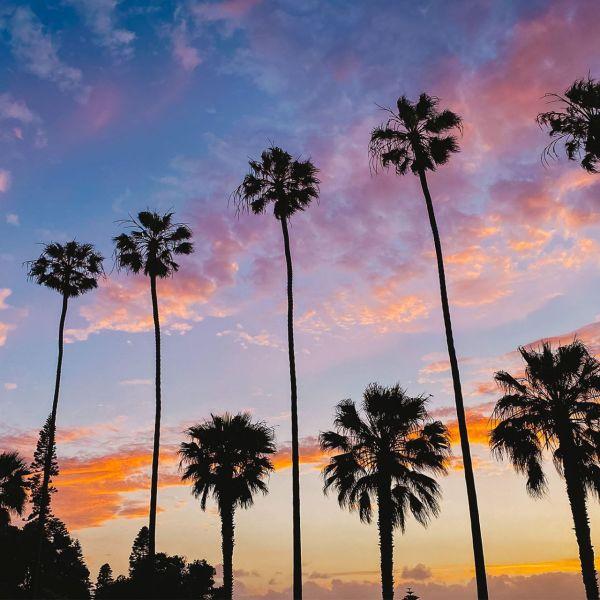 What To Do in La Jolla, California