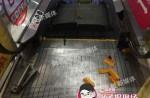 Escalator accidents - 19