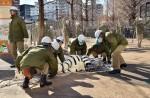 Tokyo zoo stages'zebra escape' - 10