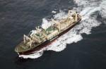 Japan keeps hunting whales - 4