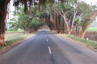 Mumbai-Goa Highway