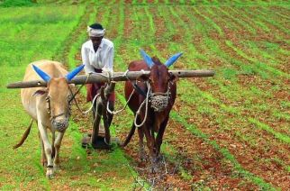 A committee is going to be set up to exclude the rich farmers from the ambit of the scheme (Representational Image)