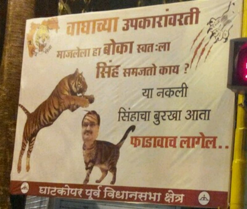 Shiv Sena mocks Ghatkopar BJP leader, photoshops his image on a cat