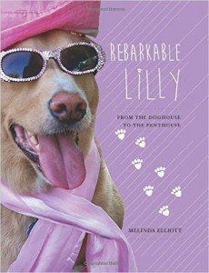 rebarkable lilly book
