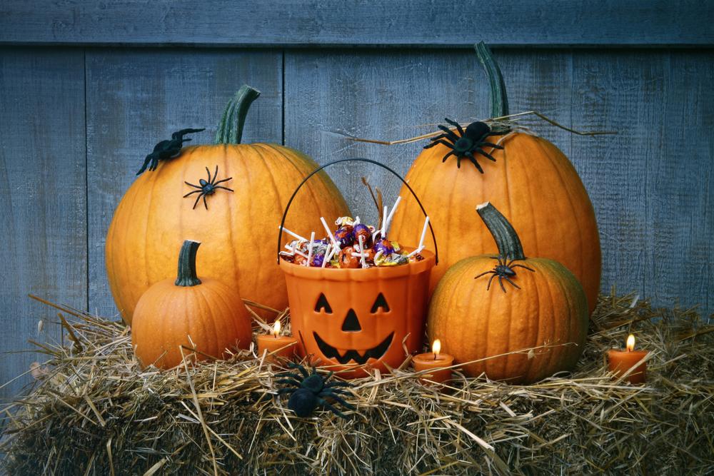 Halloween Plano pumpkins spiders