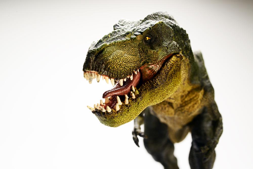 dinosaurs Heard Natural Science Museum
