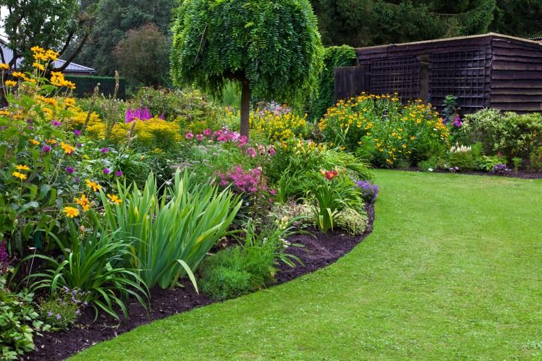 landscape yard flowers