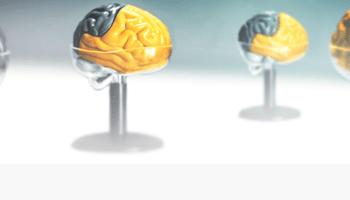 BIND, Brain Injury Network Dallas
