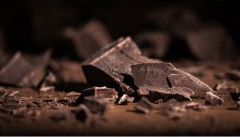 Broken bars of gourmet chocolate with scattered shavings