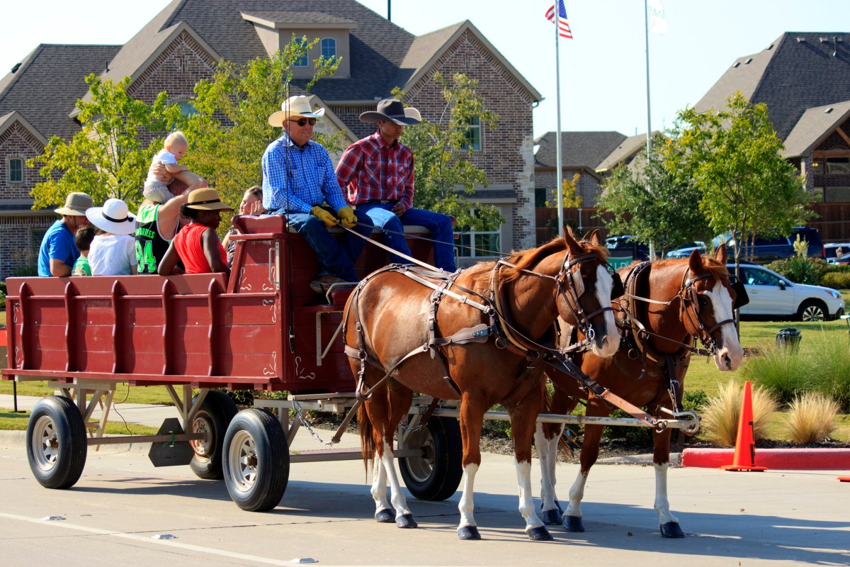 Rodeo-on-the-River_7258_300