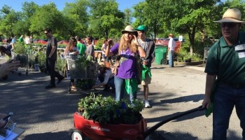 heard plant sale