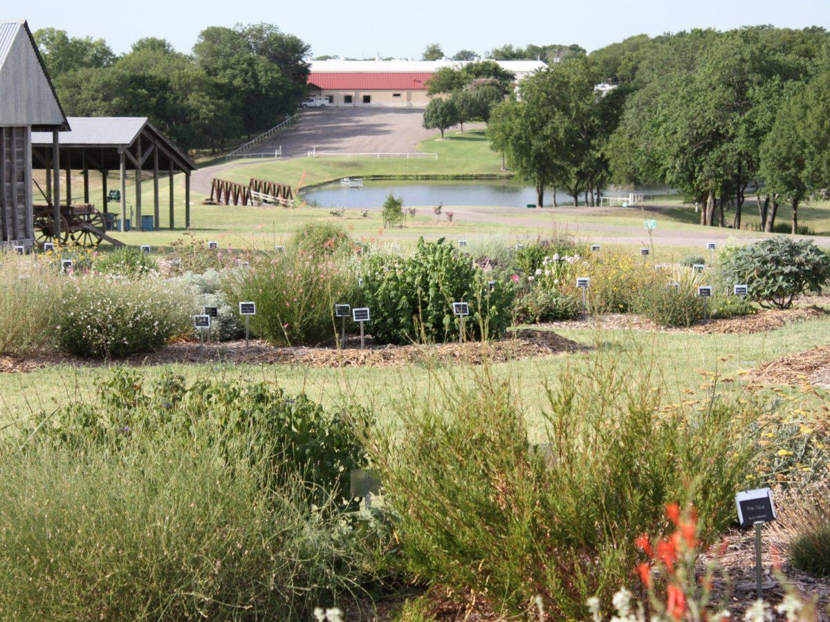 perennial garden 7 12 11 042 scaled