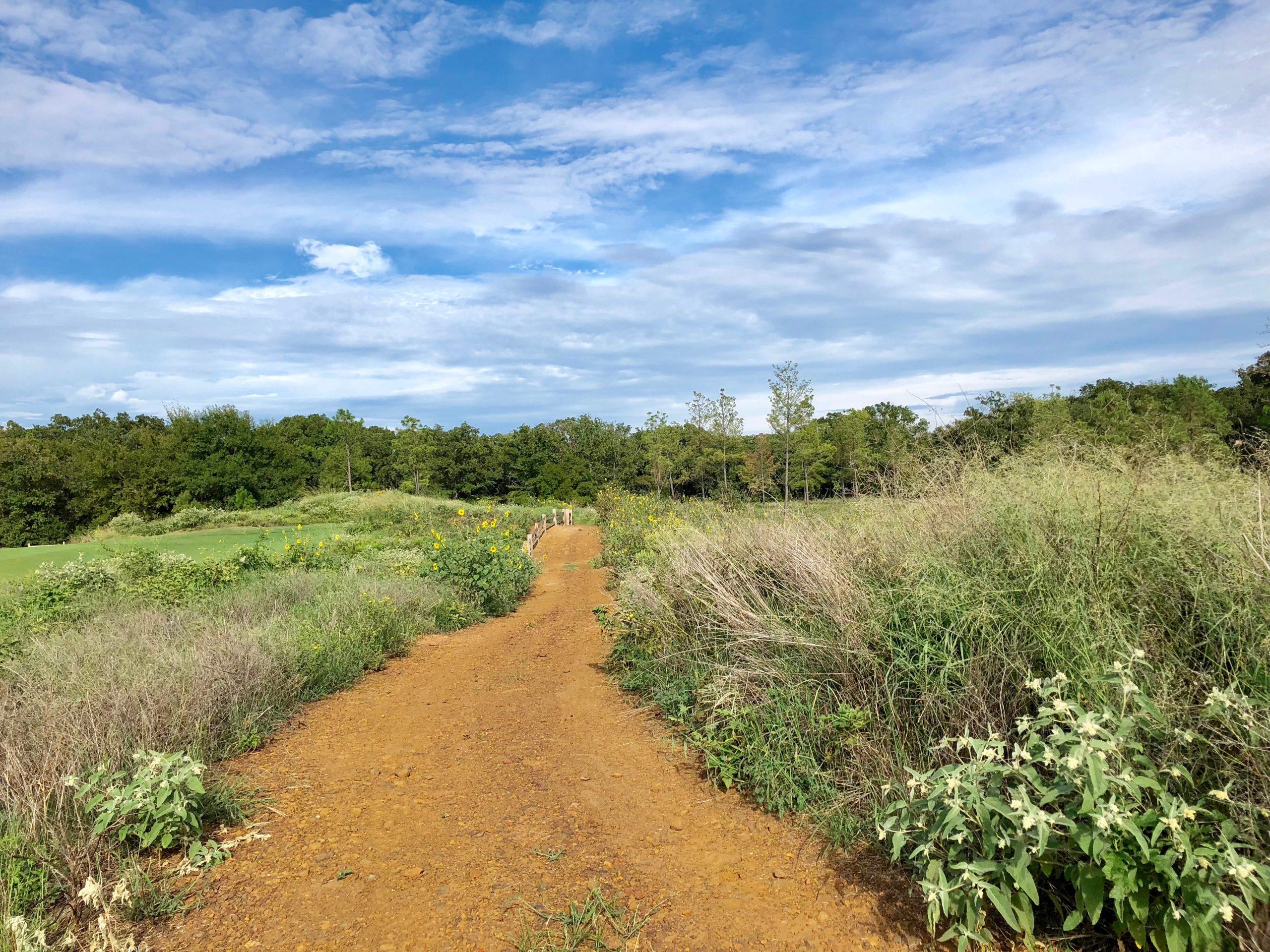 lakeside walking trail