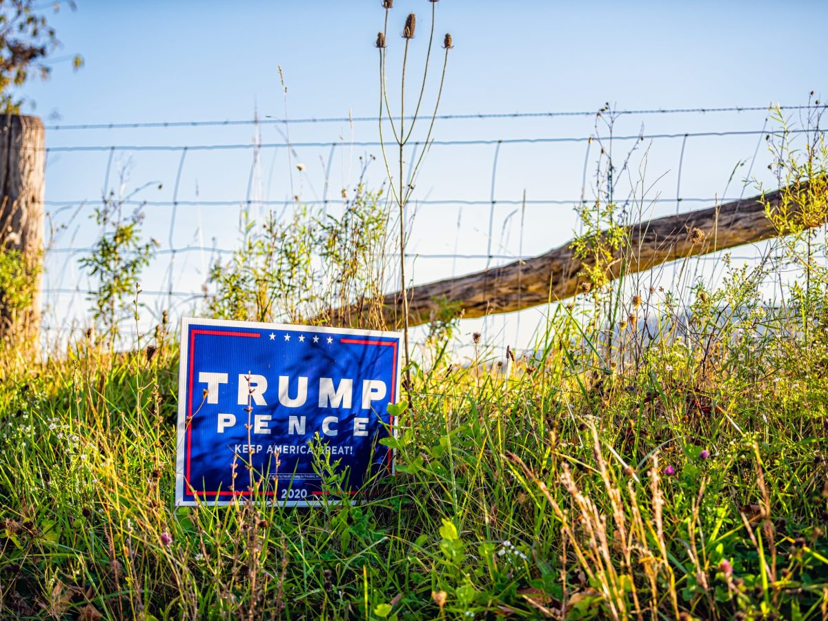 trump political sign