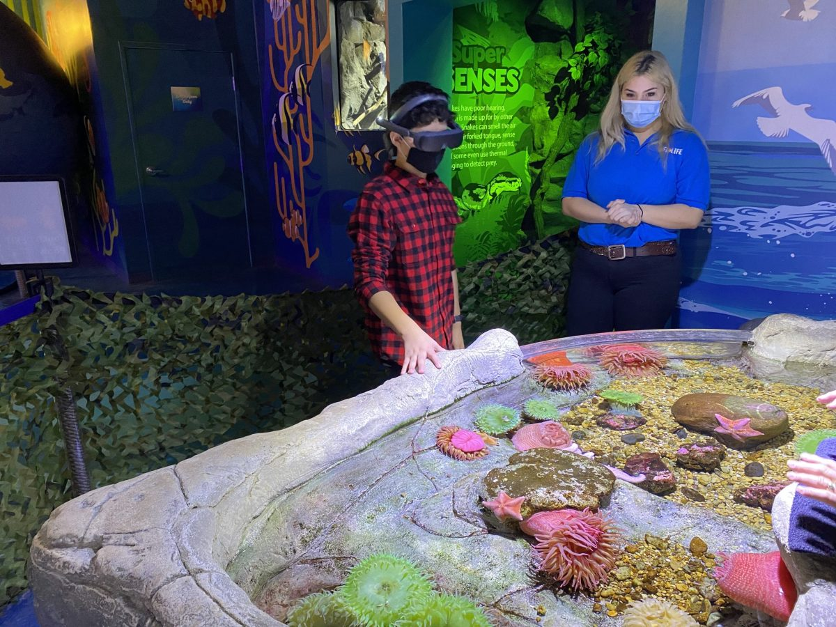 jimy rubios visit to sea life grapevine testing his esight device scaled