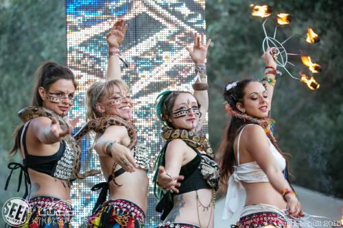 snakes, dance, women, medicine