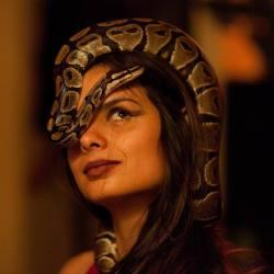 Featured Artists: Serpent Sanctum