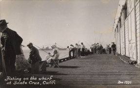Postcard : Fishing On The Wharf