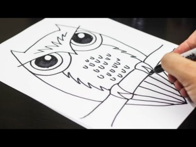 Video : How to Draw an Owl, For Kids