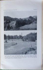 Santa Cruz Agriculture 1935
