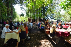 The annual pioneer picnic has been held in Pringle Grove since the 1930s.