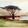 The Santa Cruz Watercolor Society at the R. Blitzer Gallery.
