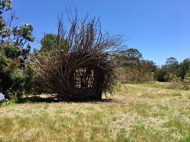 Art in the Arboretum : Environmental Installations