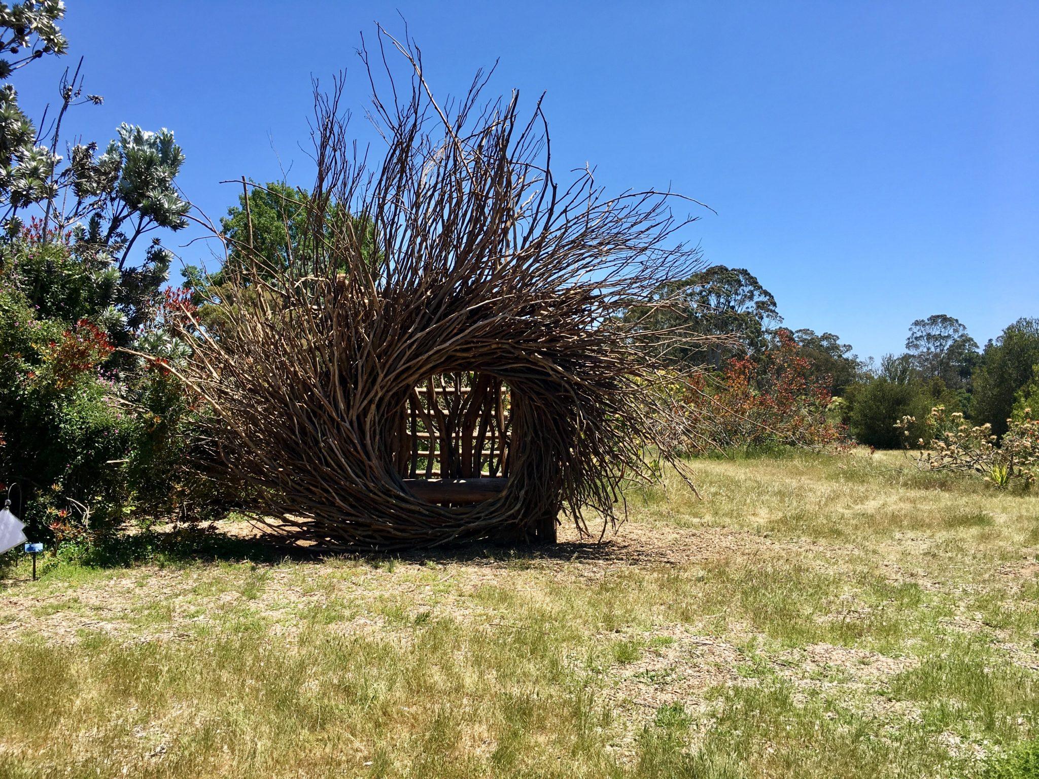 """Spirit Nest"", by Jayson Fann. Eucalyptus branches."