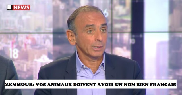 vf_facebook_eric_zemmour_3642.jpeg_north_1200x_white