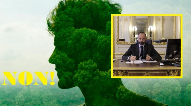 ob_3a4ca5_l-humain-nature-ecologique
