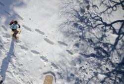 Snow Shoe Hike 2875538 1280
