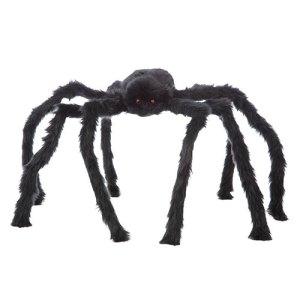 Araignée noire géante