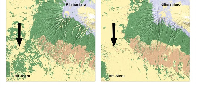Mountains become islands: ecological dangers of increasing land use in East Africa