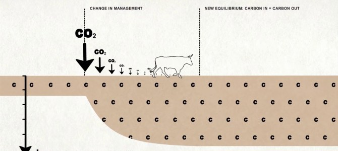 Grazed and Confused? How much can grazing livestock help to mitigate climate change?