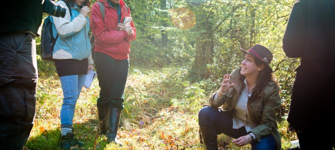 The treasure of the wild – the Foraging Course Company
