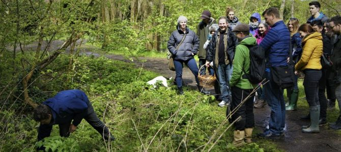 Introduction to Foraging, Cheshire