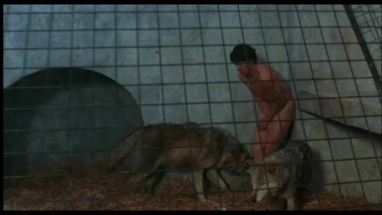 Un lupo mannaro americano a Londra scena film