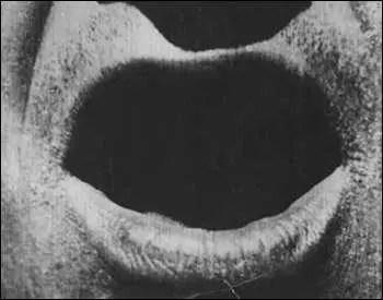 Primo piano in The Big Swallow