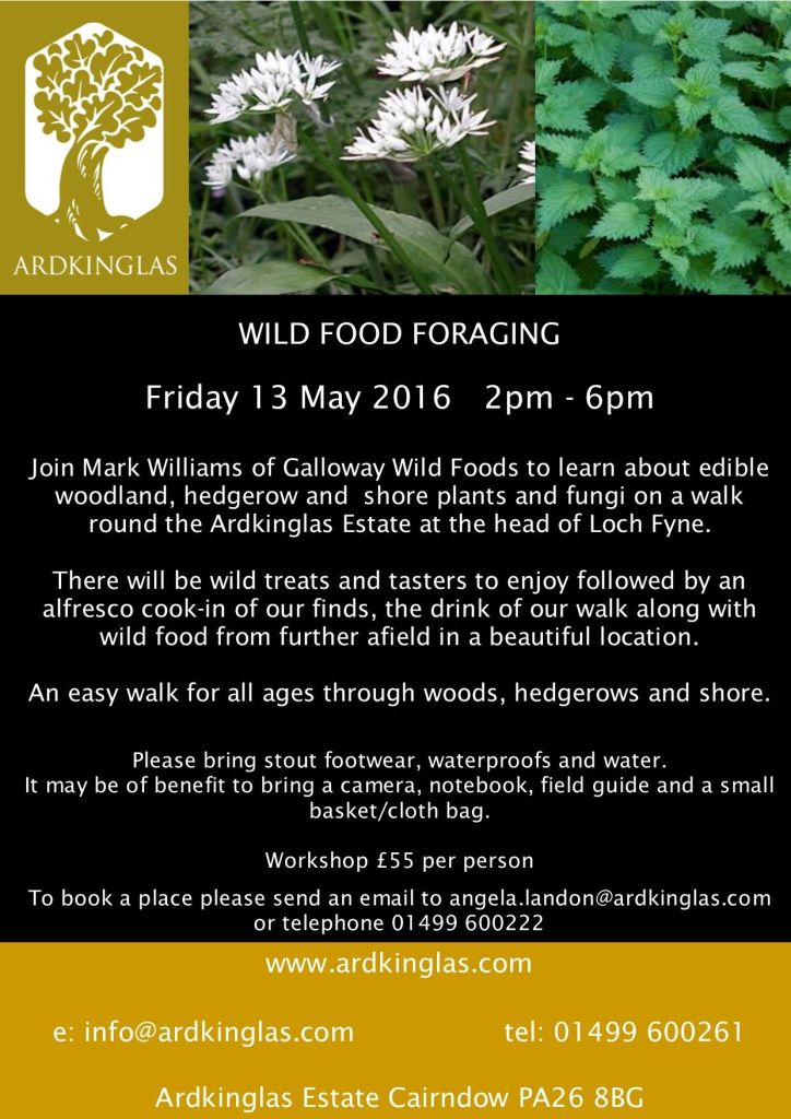 Wild-Food-Foraging-