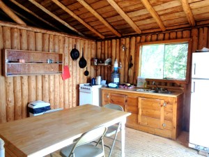 Otter Island Small Cabin Kitchen 2