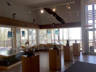 Agawa Bay Visitor Center Exhibits