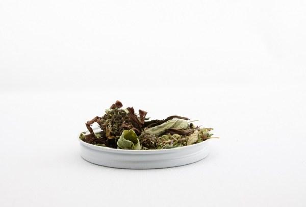 loose leaf immunity boosting tea immuni-tea