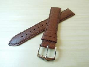DSCN5711