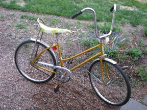Westen Flyer Miss Buzz Bike 24""